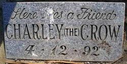 Charley (the) Crow