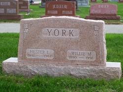 Hester <i>Busby</i> York