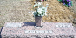 Angelina <i>Brady</i> Dollins