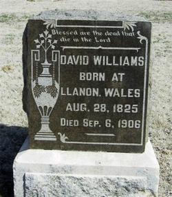 David Ab Williams