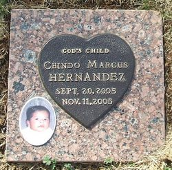 Chindo Marcus Hernandez