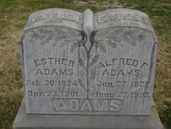 Alfred F. Adams