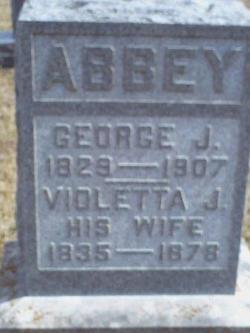 Violetta J Abbey