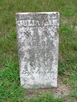 Julia Ann <i>Neal</i> Dehart