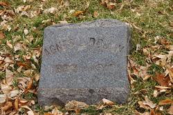 Agnes Loretta <i>Donahue</i> Dolan
