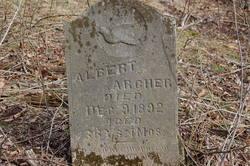 Albert Archer