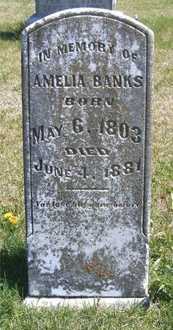 Amelia <i>Martin</i> Banks