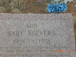 Baby Beevers