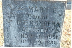 Mary E Allison