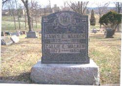 Callie E. <i>Henderson</i> Walker