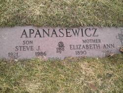 Elizabeth Ann <i>Lubniewska</i> Apanasewicz