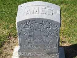 Viola <i>Young</i> Ames