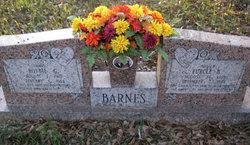 Eurice B Barnes