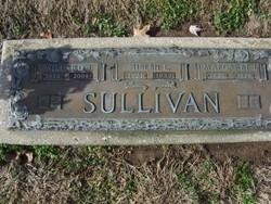 Helen Louise <i>Mester</i> Sullivan