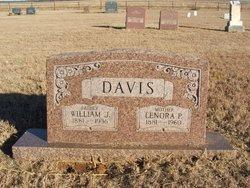 William Judson Davis