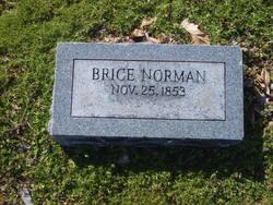 Brice Norman