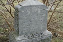 Demetra P. Clowes