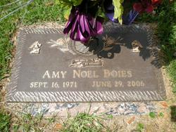 Amy Noel Boies