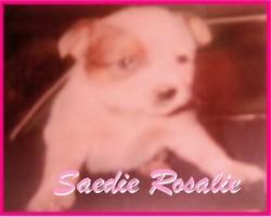 Saedie Rosalie Capps