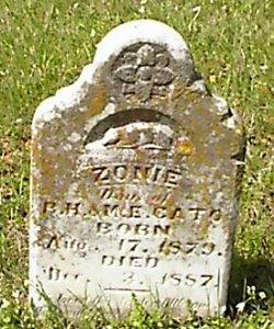 Annie Cato