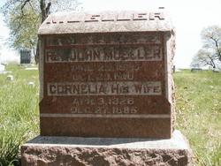 Cornellia <i>Camp</i> Muller