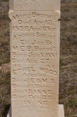 Alpheus Bennett