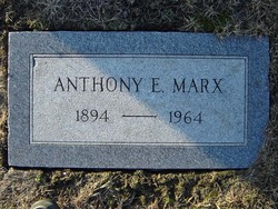 Anthony E Marx