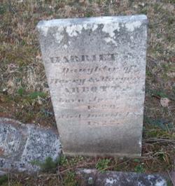 Harriett N. Abbott