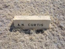 A. N. Curtis