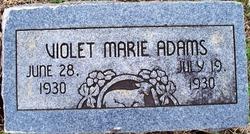 Violet Marie Adams