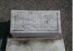 William Ansel Adams