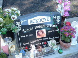 Scarlet Delight <i>O'Hara</i> Ackroyd