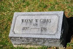 Wayne W Gibbs