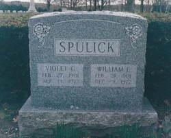 Violet Georgia <i>Greenwood</i> Spulick