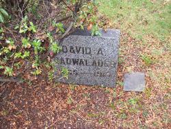 David A Cadwalader