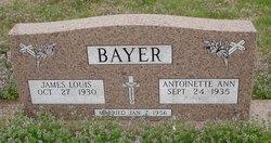 Antoinette Ann <i>Neu</i> Bayer