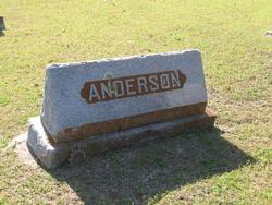 Linda <i>Giddings</i> Anderson