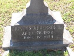 Edmund Pickens Pickens Anderson, Jr