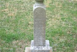 Willie Hilton