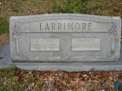 Abraham Garfield Finn Larrimore