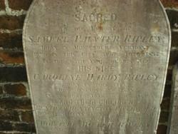Caroline Hardy <i>Bentham</i> Ripley