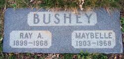 Ray Allen Bushey