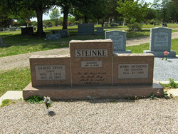 Gil Steinke