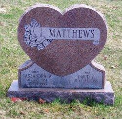 Cassandra Ann <i>Fortin</i> Matthews