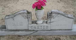 Carroll Carter