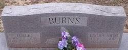 Tullie Burns