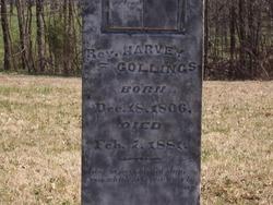 Rev Harvey Collings