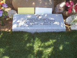 Gayle Davis