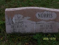 Elizabeth Sophia Betty <i>Jamison</i> Norris
