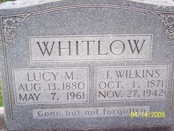 J Wilkins Whitlow